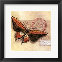Framed Le Papillon II
