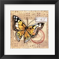 Framed Le Papillon IV