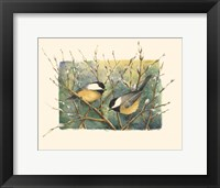 Framed Chickadees and Pussy Willow