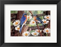 Framed Serenade in Blue