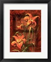 Day Lily I Framed Print