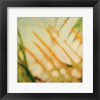Tropical Texture I Framed Print