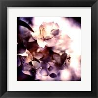 Framed Purple Dusk I