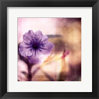 Framed Purple Tranquility I