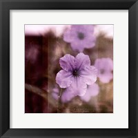 Framed Purple Tranquility II
