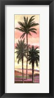 Framed Blush Palms II