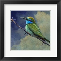 Framed Bee Eater