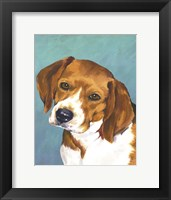 Dog Portrait-Beagle Framed Print