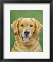 Dog Portrait-Golden Framed Print