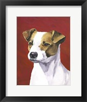 Dog Portrait-Jack Framed Print