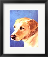 Framed Dog Portrait-Yellow Lab
