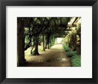 Framed opulent garden I