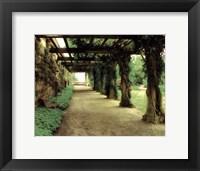 Framed opulent garden II