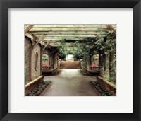 Framed opulent garden IV