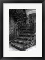 Framed Savannah stairs III