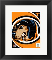 Framed University of Tennessee Volunteers Team Logo