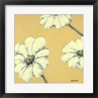 Framed Floral Cache IV