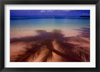Framed Palm Shadow Paradise