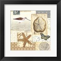 Coastal Collage III Framed Print