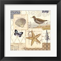 Coastal Collage IV Framed Print