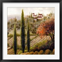 Tuscany Vineyard II Framed Print