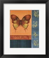 Framed Colorful Wings I
