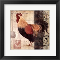 Cockerel II Framed Print