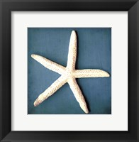 Sea Star II Framed Print