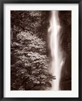 Framed Multnomah Falls