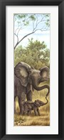 Framed Mama Elephant with Baby