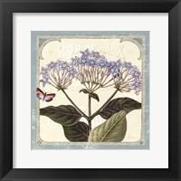 Parisian Flower I Framed Print