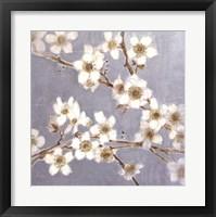 Framed Silver Blossoms I