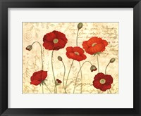 Framed Poppies In Bloom