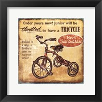 Framed Tricycle