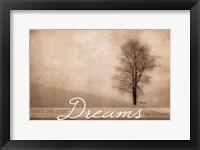 Dreams II Framed Print