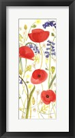 Framed Meadow Poppies III