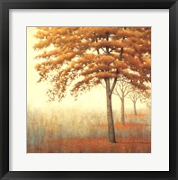 Framed Autum Trees I