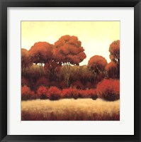 Framed Autumn Forest II