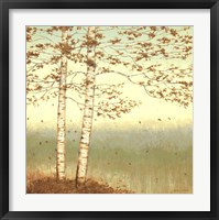 Framed Golden Birch I with Blue Sky