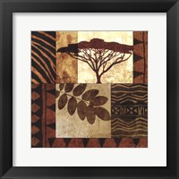Acacia Sunrise II Framed Print