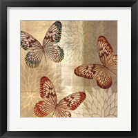 Tropical Butterflies II Framed Print