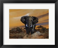 Framed Charging Bull Elephants