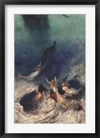 Framed Sailor's Delight, 1891