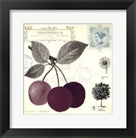 Cherry Notes Framed Print
