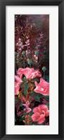 Framed Pink Azalea Garden II