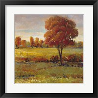Framed Field in Fall