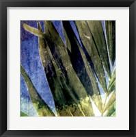 Framed Tropical Memory I