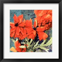 Framed Poppy Play I
