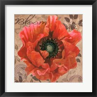 Framed Poppy Swirl V