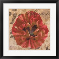 Framed Poppy Swirl VI